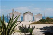 Visit Noirmoutier island close to campsite La Pomme de Pin at St Hilaire de Riez